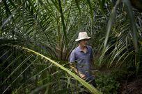 DPhil fieldwork in Northern Thailand. © David Maurice Smith