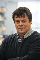 Prof Ian Tomlinson