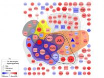 Transcriptomic analysis of the interaction of human airway T cells and eptihelial cells